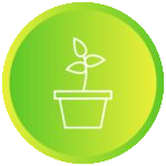 Green pot with single green plant