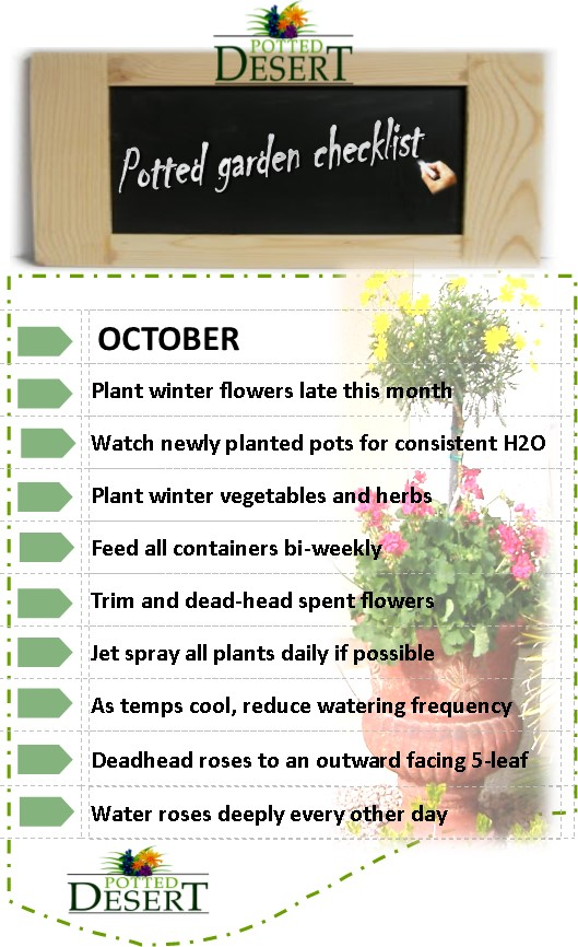 October's Potted Desert Garden Checklist